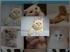 js网格图片相册换一换代码