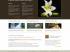 欧美风格的html页面模板_div css网站模板_漂亮的html模板下载