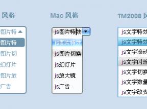 js select框美化插件设置多种风格select美化列表框