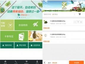 网上蔬菜手机商城网站wap模板