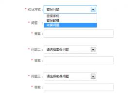 js控制select选中显示不同表单内容select下拉菜单特效