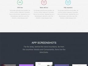 大气宽屏的社交app手机软件介绍html5模板
