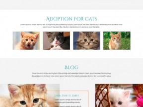 静态的猫咪宠物网站模板html下载