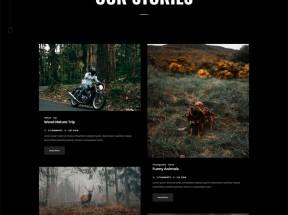 创意的图片摄影作品集网页模板
