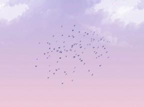 天空中一群鸟飞行canvas特效